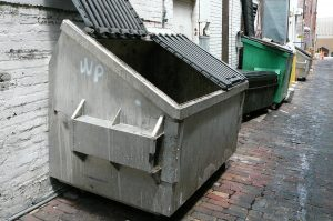 How to Choose Skip Bin Perth According to Your Needs