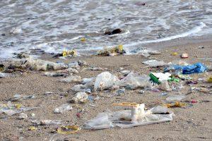 Marine Waste On A Beach